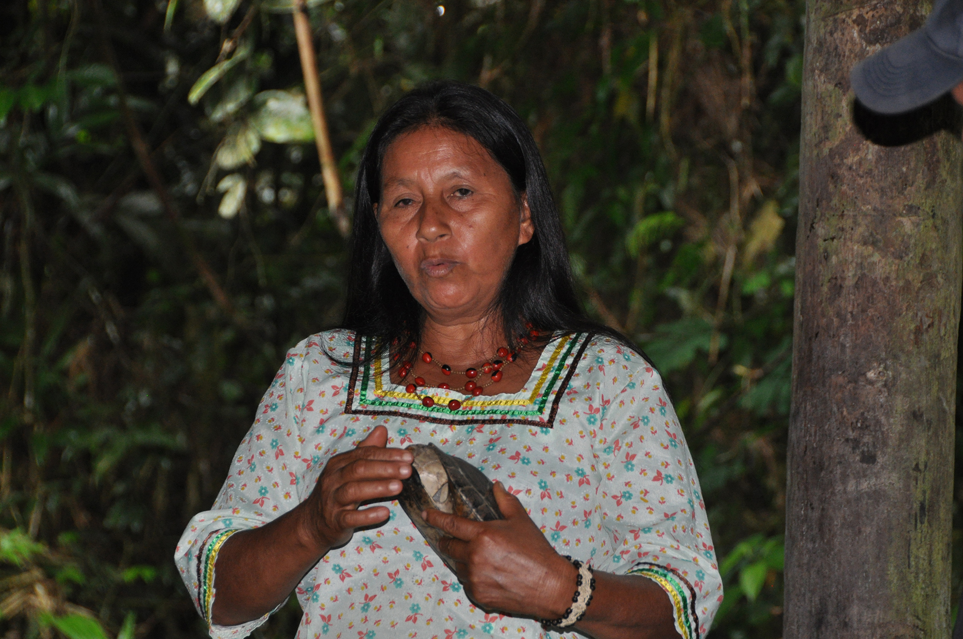 Indigenous Amazonia The Kichwa Part 3 Here And Abroad