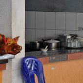 Ecuador-2010-Roasted-Pig