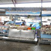 Ecuador-p14865